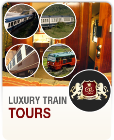 Luxury Train Tours in Spain