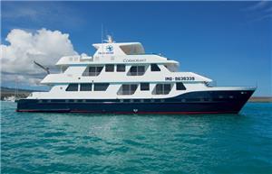 Cormorant Catamaran