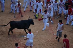 San Fermin Running of the Bulls Experience (Madrid-Pamplona-Barcelona