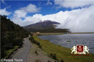 Nature Walk in Cotopaxi National Park