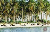 Plenty of time to take in the beach on your Kerala tour