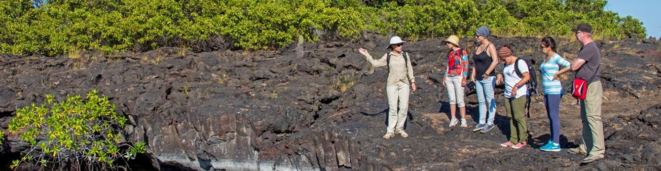 Visit Galapagos with the experts