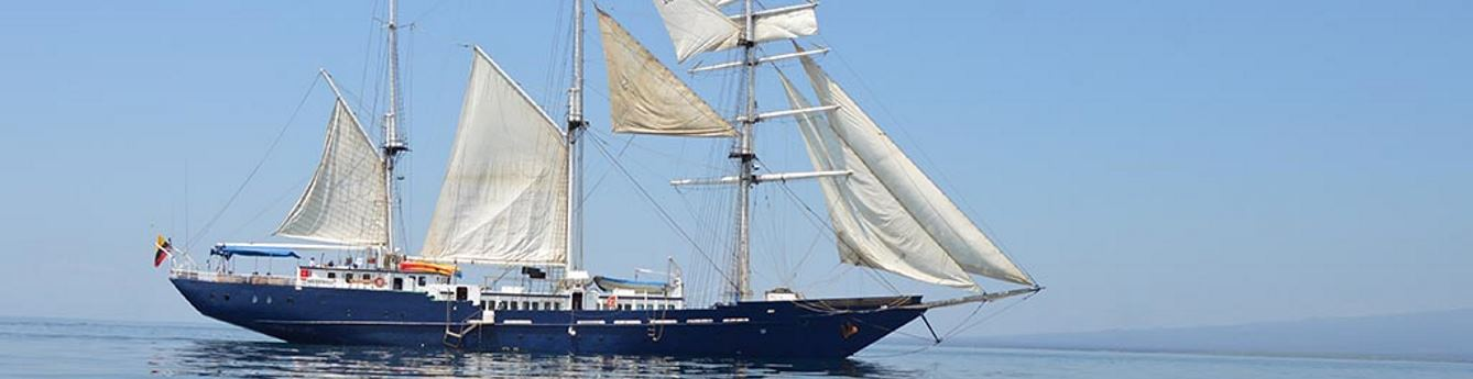 Experience the sensation of navigating under a full sail