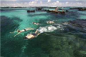 Go swimming in crystal-clear seas!