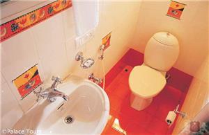 Western-style bathroom on board the house boat