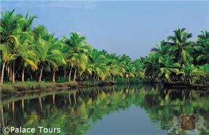 Scenic backwaters of Kerala