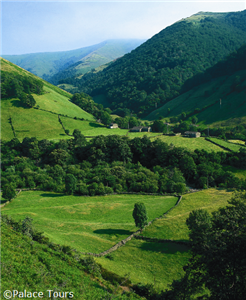 Enjoy the rolling green views of the Prados de Cantabria